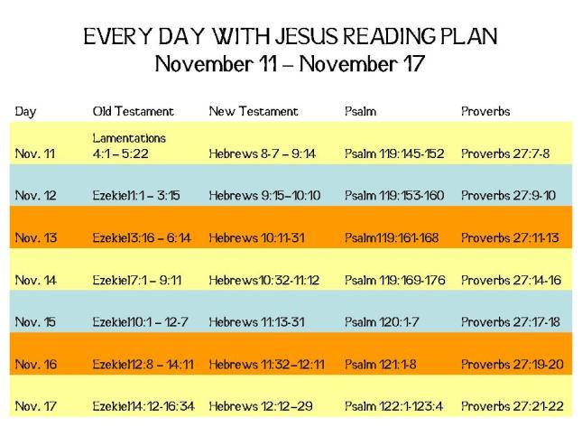 November 11 - November 17